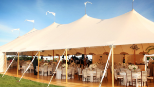 High Quality Peg and Pole Tents at Low Price Buy Now