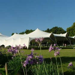 Stretch Tents Manufacturers